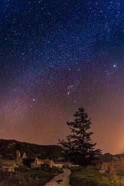 Star Gazing by Tomasz Huczek