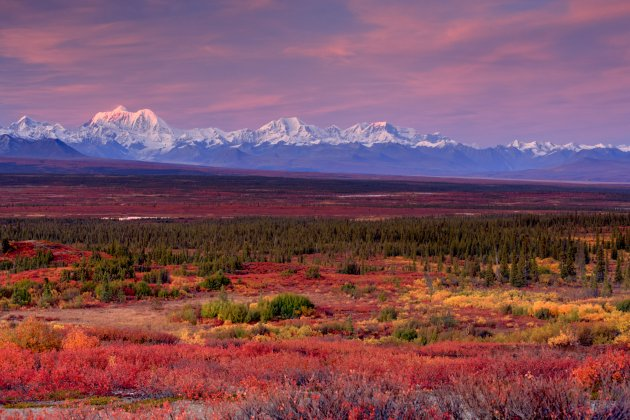 Alaska Range by Bill Wild