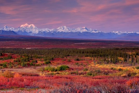 Alaska Range by Bill Wild