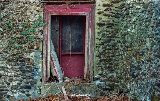 red door by Betsey Karl 20200305